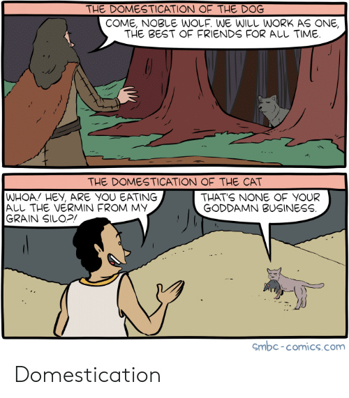 Friends, Work, and Best: THE DOMESTICATION OF THE DOG  COME, NOBLE WOLF. WE WILL WORK AS ONE,  THE BEST OF FRIENDS FOR AししTIME  THE DOMESTICATION OF THE CAT  WHOA! HEY, ARE YOU EATING  ALL THE VERMIN FROM MY  GRAIN SILOP  THATS NONE OF YOUR  GODDAMN BUSINESS  Smbc-comics.com Domestication