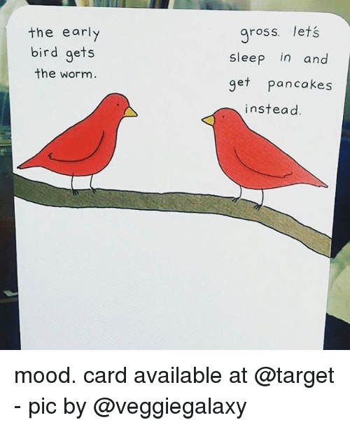 Memes, Mood, and Target: the early  bird gets  the worm  ross. lets  sleep in and  get pancakes  instead mood. card available at @target - pic by @veggiegalaxy