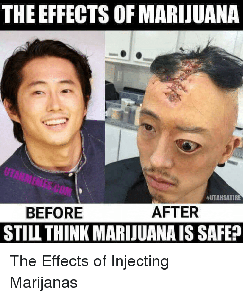 The Effects Of Marijuana Utah Satire After Before Still Think