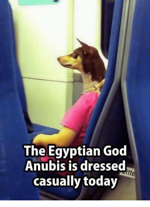 God, Memes, and Today: The Egyptian God  Anubis is dressed  casually today