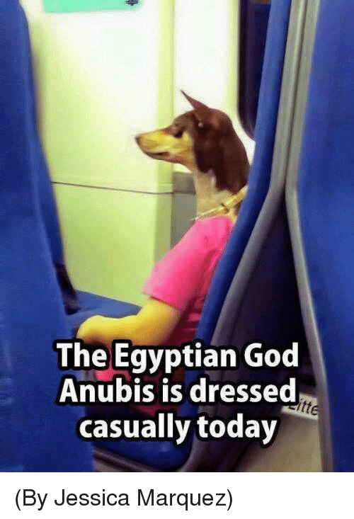 God, Memes, and Today: The Egyptian God  Anubis is dressed  casually today (By Jessica Marquez)