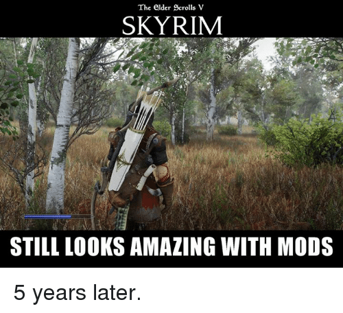 Skyrim, Video Games, and Amaz: The elder Scrolls V  SKYRIM  STILL LOOKS AMAZING WITH MODS 5 years later.