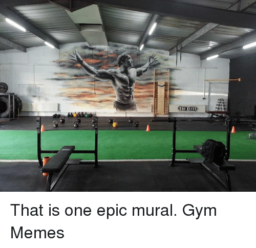 Gym, Memes, and Epic: THE ELITE That is one epic mural.