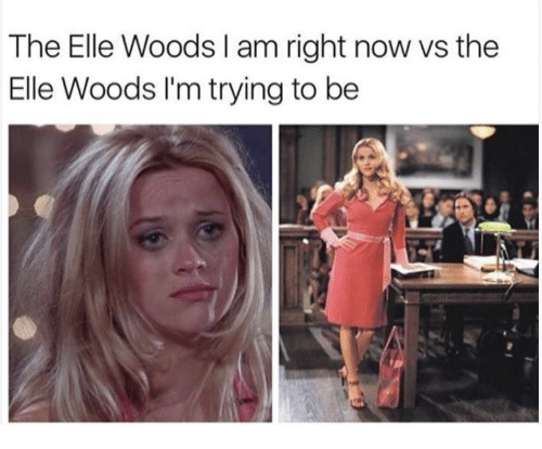 Elle Woods And Now The Elle Woods I Am Right Now Vs The