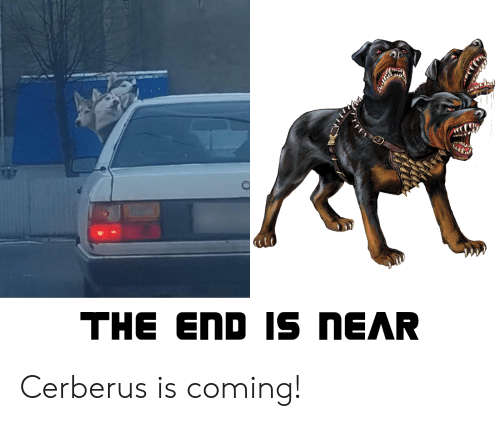 The END Is NEAR Cerberus Is Coming! | Cerberus Meme on ME ME
