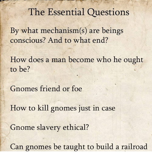 Dank, How To, and 🤖: The Essential Questions  By what mechanism(s) are beings  conscious? And to what end?  How does a man become who he ought  to be?  Gnomes friend or foe  How to kill gnomes just in case  Gnome slavery ethical?  Can gnomes be taught to build a railroad