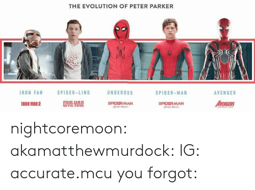 Spider, SpiderMan, and Tumblr: THE EVOLUTION OF PETER PARKER  IRON FAN  SPIDER-LING  UNDEROOS  SPIDER-MAN  AVENGER  IRON MRN2  SPIDERMAN  AVENGERS  SPIDERMAN nightcoremoon:  akamatthewmurdock:  IG: accurate.mcu  you forgot: