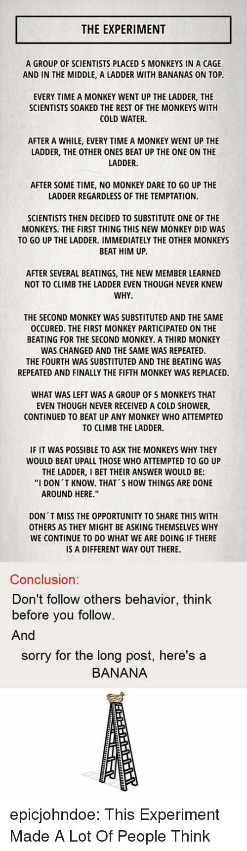 """I Bet, Shower, and Sorry: THE EXPERIMENT  A GROUP OF SCIENTISTS PLACED 5 MONKEYS IN A CAGE  AND IN THE MIDDLE, A LADDER WITH BANANAS ON TOP  EVERY TIME A MONKEY WENT UP THE LADDER, THE  SCIENTISTS SOAKED THE REST OF THE MONKEYS WITH  COLD WATER.  AFTER A WHILE, EVERY TIME A MONKEY WENT UP THE  LADDER, THE OTHER ONES BEAT UP THE ONE ON THE  LADDER.  AFTER SOME TIME, NO MONKEY DARE TO GO UP THE  LADDER REGARDLESS OF THE TEMPTATION.  SCIENTISTS THEN DECIDED TO SUBSTITUTE ONE OF THE  MONKEYS. THE FIRST THING THIS NEW MONKEY DID WAS  TO GO UP THE LADDER. IMMEDIATELY THE OTHER MONKEYS  BEAT HIM UP.  AFTER SEVERAL BEATINGS, THE NEW MEMBER LEARNED  NOT TO CLIMB THE LADDER EVEN THOUGH NEVER KNEW  WHY  THE SECOND MONKEY WAS SUBSTITUTED AND THE SAME  OCCURED. THE FIRST MONKEY PARTICIPATED ON THE  BEATING FOR THE SECOND MONKEY. A THIRD MONKEY  WAS CHANGED AND THE SAME WAS REPEATED.  THE FOURTH WAS SUBSTITUTED AND THE BEATING WAS  REPEATED AND FINALLY THE FIFTH MONKEY WAS REPLACED.  WHAT WAS LEFT WAS A GROUP OF 5 MONKEYS THAT  EVEN THOUGH NEVER RECEIVED A COLD SHOWER,  CONTINUED TO BEAT UP ANY MONKEY WHO ATTEMPTED  TO CLIMB THE LADDER.  IF IT WAS POSSIBLE TO ASK THE MONKEYS WHY THEY  WOULD BEAT UPALL THOSE WHO ATTEMPTED TO GO UP  THE LADDER, I BET THEIR ANSWER WOULD BE:  """"I DON T KNOW. THAT'S HOW THINGS ARE DONE  AROUND HERE.""""  DON T MISS THE OPPORTUNITY TO SHARE THIS WITH  OTHERS AS THEY MIGHT BE ASKING THEMSELVES WHY  WE CONTINUE TO DO WHAT WE ARE DOING IF THERE  IS A DIFFERENT WAY OUT THERE.  Conclusion:  Don't follow others behavior, think  before you follow.  And  sorry for the long post, here's a  BANANA epicjohndoe:  This Experiment Made A Lot Of People Think"""