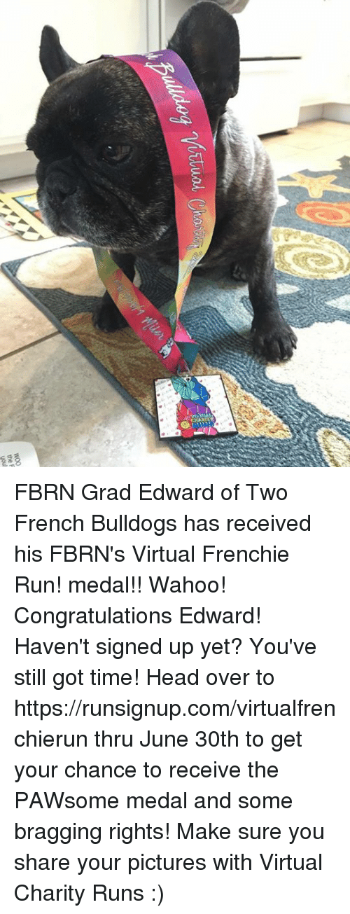 Head, Memes, and Run: the F  you FBRN Grad Edward of Two French Bulldogs has received his  FBRN's Virtual Frenchie Run! medal!! Wahoo! Congratulations Edward!  Haven't signed up yet? You've still got time! Head over to  https://runsignup.com/virtualfrenchierun thru June 30th to get your chance to receive the PAWsome medal and some bragging rights!  Make sure you share your pictures with Virtual Charity Runs :)