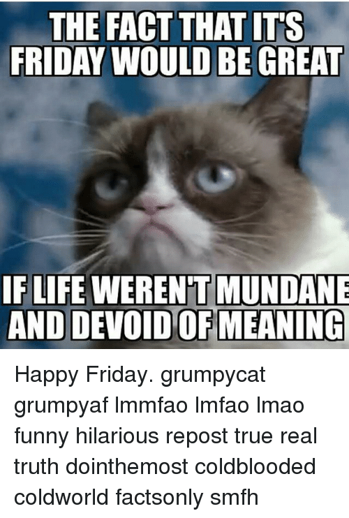 The FACT THAT ITS FRIDAY WOULD BE GREAT IF LIFE MUNDANE AND