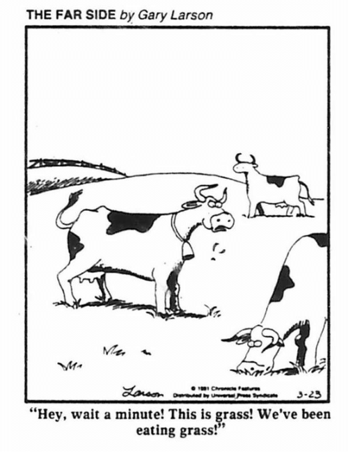 "Dank Memes, Waiting..., and Been: THE FAR SIDE by Gary Larson  3-23  ""Hey, wait a minute! This is grass! We've been  eating grass!"""