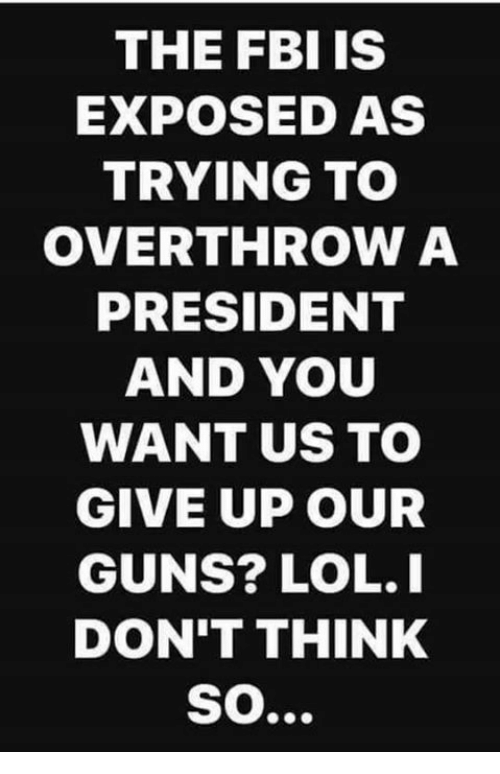 Fbi, Guns, and Lol: THE FBI IS  EXPOSED AS  TRYING TO  OVERTHROW A  PRESIDENT  AND YOU  WANT US TO  GIVE UP OUR  GUNS? LOL.I  DON'T THINK  SO