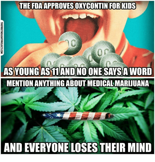 Memes, Kids, and Marijuana: THE FDAAPPROVES OKYCONTIN FOR KIDS  AS YOUNGAS11 ANDNO ONE SAYSA WORD  MENTION ANYTHING ABOUT MEDICAL MARIJUANA  AND EVERYONE LOSES THEIR MIND