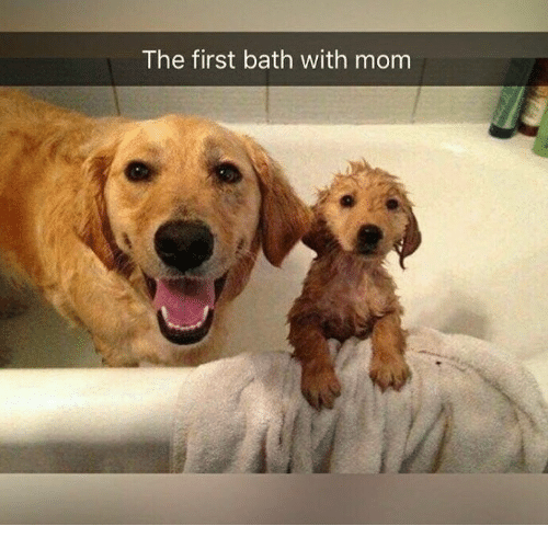 Mom, First, and Bath: The first bath with mom