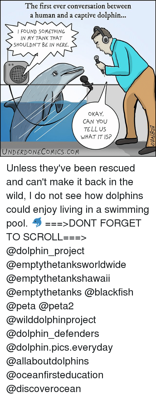 Memes, Peta, and Dolphin: The first ever conversation between  a human and a captive dolphin...  I FOUND SOMETHING  IN MY TANK THAT  SHOULDNT BE IN HERE.  OKAY,  CAN YOU  TELL US  WHAT IT SP  UNDERDONECOMICS.COM Unless they've been rescued and can't make it back in the wild, I do not see how dolphins could enjoy living in a swimming pool. 🐬 ===>DONT FORGET TO SCROLL===> @dolphin_project @emptythetanksworldwide @emptythetankshawaii @emptythetanks @blackfish @peta @peta2 @wilddolphinproject @dolphin_defenders @dolphin.pics.everyday @allaboutdolphins @oceanfirsteducation @discoverocean