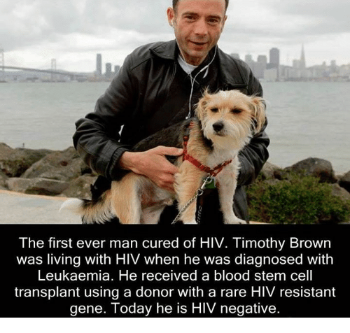 Can You Get Hiv From A Dog