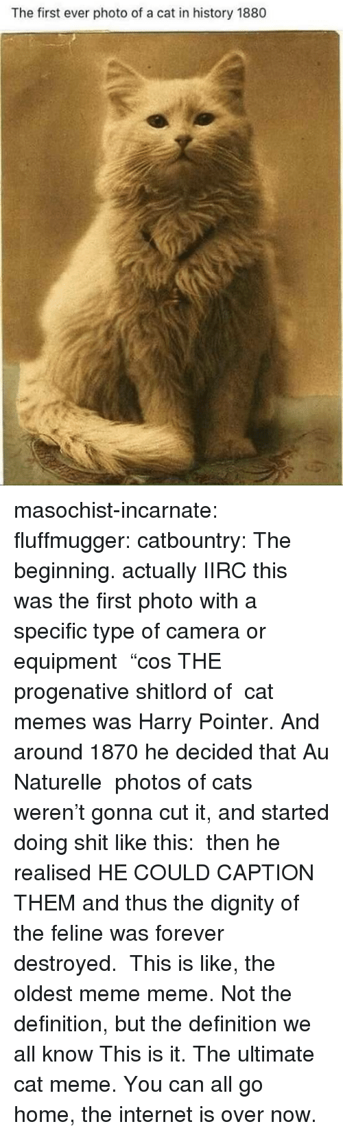 """Cats, Internet, and Meme: The first ever photo of a cat in history 1880 masochist-incarnate:  fluffmugger:  catbountry: The beginning. actually IIRC this was the first photo with a specific type of camera or equipment """"cos THE progenative shitlord of cat memes was Harry Pointer. And around 1870 he decided that Au Naturelle photos of cats weren't gonna cut it, and started doing shit like this: then he realised HE COULD CAPTION THEM and thus the dignity of the feline was forever destroyed.   This is like, the oldest meme meme. Not the definition, but the definition we all know   This is it. The ultimate cat meme. You can all go home, the internet is over now."""