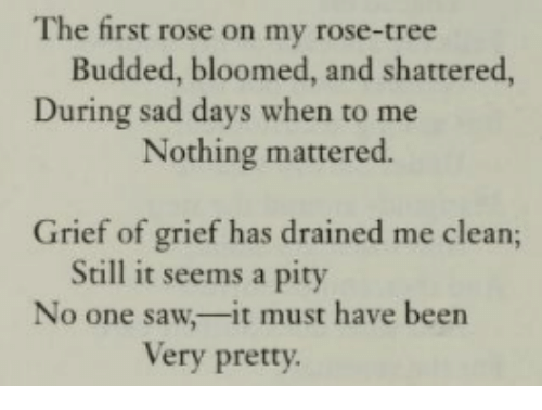 Saw, Rose, and Tree: The first rose on my rose-tree  Budded, bloomed, and shattered,  During sad days when to me  Nothing mattered.  Grief of grief has drained me clean;  Still it seems a pity  No one saw,-it must have been  Very pretty