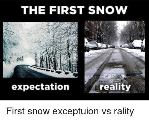 the first snow expectation reality funny meme on me me
