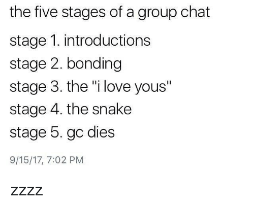 The Five Stages of a Group Chat Stage 1 Introductions Stage