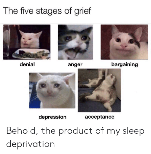 Depression, Grief, and Sleep: The five stages of grief  denial  bargaining  anger  depression  acceptance Behold, the product of my sleep deprivation