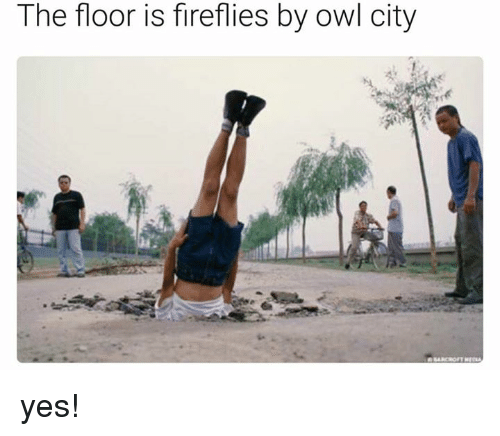 Memes, 🤖, and Yes: The floor is fireflies by owl city yes!