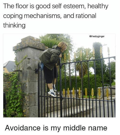 Memes, Good, and Middle Name: The floor is good self esteem, healthy  coping mechanisms, and rational  thinking  @thedryginger Avoidance is my middle name