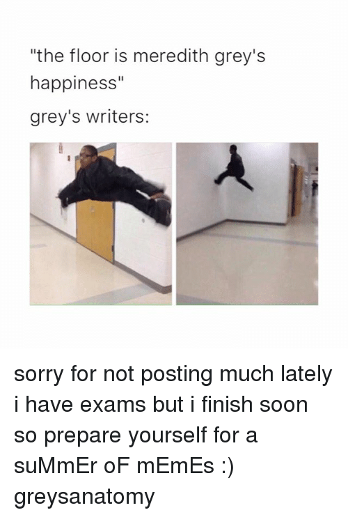 "Memes, Soon..., and Sorry: ""the floor is meredith grey's  happiness""  grey's writers: sorry for not posting much lately i have exams but i finish soon so prepare yourself for a suMmEr oF mEmEs :) greysanatomy"