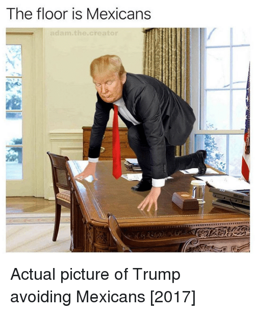 [Image: the-floor-is-mexicans-adam-the-creator-a...686755.png]