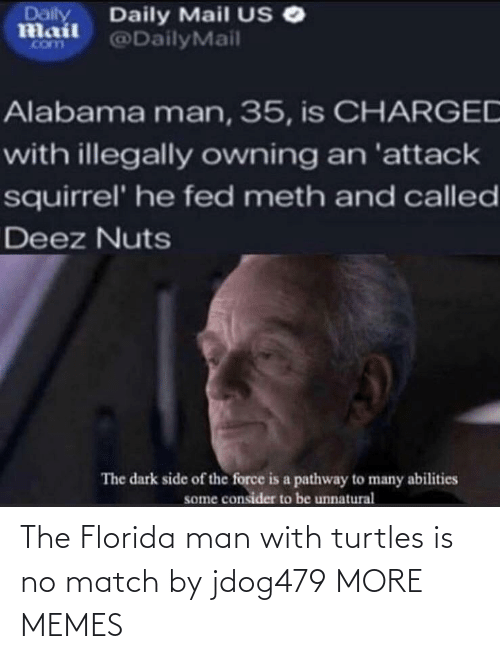 Dank, Florida Man, and Memes: The Florida man with turtles is no match by jdog479 MORE MEMES