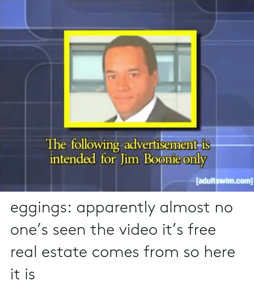 Apparently, Target, and Tumblr: The following advertisement is  intended for Jim Boonie only  adultswim.com eggings: apparently almost no one's seen the video it's free real estate comes from so here it is