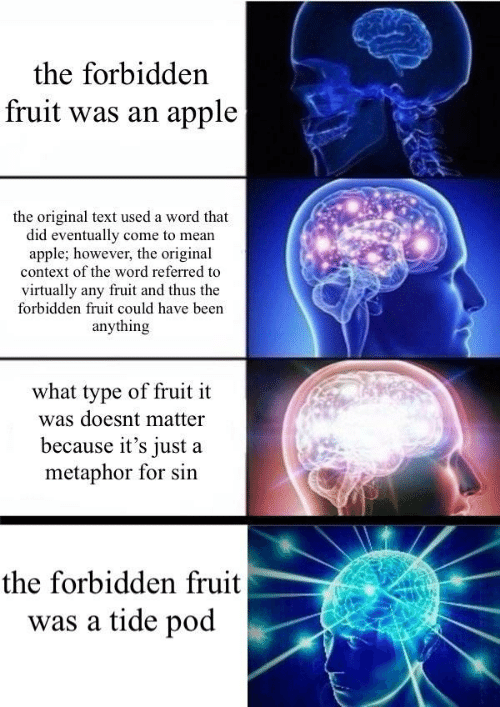 Apple, Mean, and Metaphor: the forbidden  fruit was an apple  the original text used a word that  did eventually come to mean  apple; however, the original  context of the word referred to  virtually any fruit and thus the  forbidden fruit could have been  anything  what type of fruit it  was doesnt matter  because it's just a  metaphor for sin  the forbidden fruit  was a tide pod