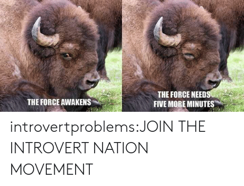 Introvert, Tumblr, and Blog: THE FORCE NEED  FIVE MORE MINUTES  THE FORCE AWAKENS introvertproblems:JOIN THE INTROVERT NATION MOVEMENT