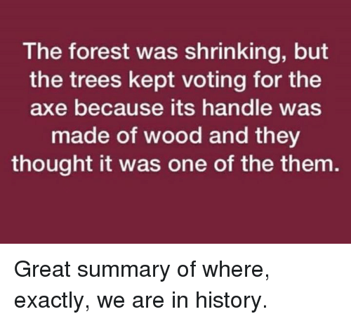 Memes, History, and Trees: The forest was shrinking, but  the trees kept voting for the  axe because its handle was  made of wood and they  thought it was one of the them Great summary of where, exactly, we are in history.