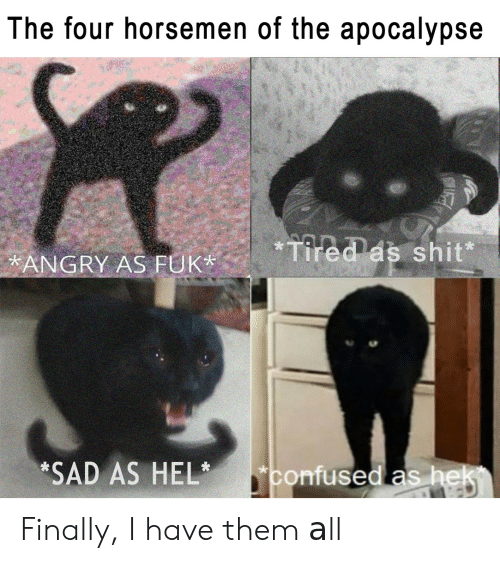 Angry, Sad, and Apocalypse: The four horsemen of the apocalypse  ANGRY AS FUKTees shit  *SAD AS HELconfused as hek Finally, I have them аll