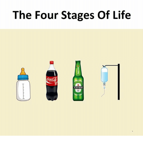 Life, The Four, and The: The Four Stages Of Life
