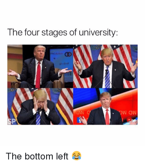 University, The Four, and  Left: The four stages of university:  glebol  ON The bottom left 😂