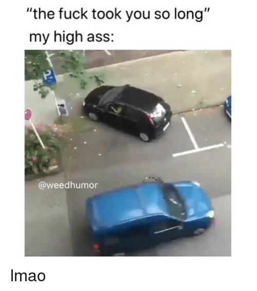 "Ass, Lmao, and Weed: ""the fuck took you so long""  my high ass:  @weedhumor lmao"
