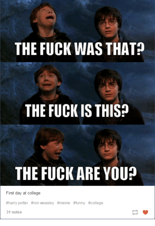 Dank, 🤖, and Potter: THE FUCK WAS THAT  THE FUCK IS THISP  THE FUCK ARE YOU?  First day at college  #harry potter #ron weasley #meme #funny #college  31 notes