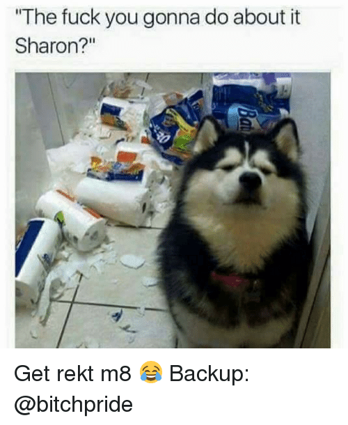 """Memes, 🤖, and Backup: """"The fuck you gonna do about it  Sharon?"""" Get rekt m8 😂 Backup: @bitchpride"""