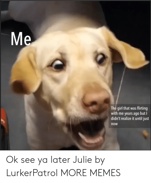 Dank, Memes, and Target: The girl that was flirting  with me years ago but I  didn't realize it until just  now Ok see ya later Julie by LurkerPatrol MORE MEMES
