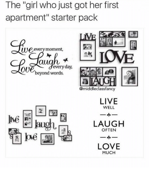 Memes Starter Packs And The Who Just Got Her First
