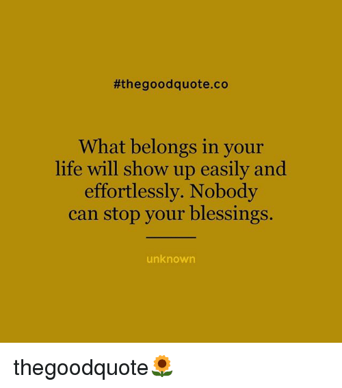 The Good Quote Endearing The Good Quote Co What Belongs In Your Life Will Show Up Easily