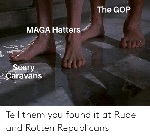 Memes, Rude, and 🤖: The GOP  MAGA Hatters  Scary  Caravans Tell them you found it at Rude and Rotten Republicans