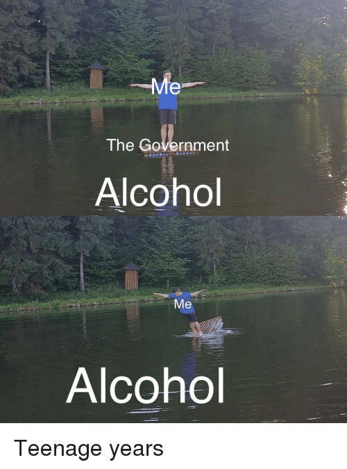 Reddit, Alcohol, and Government: The Government  Alcohol  Alcohol