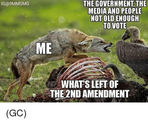 Memes, Old, and Government: THE GOVERNMENT, THE  MEDIAAND PEOPLE  NOT OLD ENOUGH  IG@9MMSMG  ME  WHAT'S LEFT OF  THE 2ND AMENDMENT  , (GC)