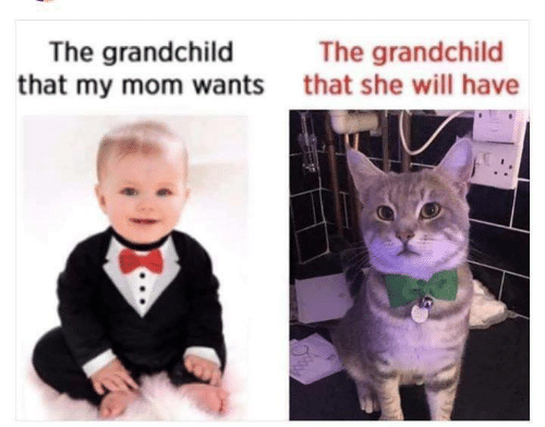 Mom, Will, and She: The grandchild  that my mom wants  The grandchild  that she will have