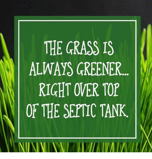 Memes, 🤖, and Tank: THE GRASS IS  ALWAYS GREENER...  RIGHT OVER TOP  OF THE SEPTIC TANK