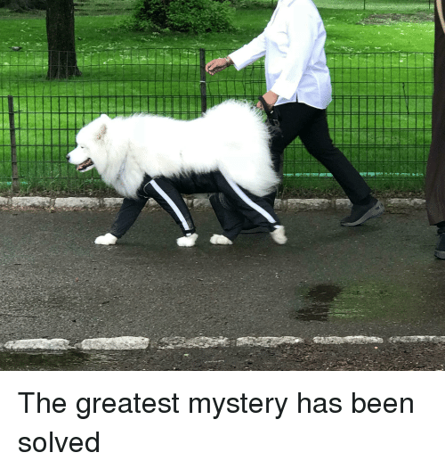 Mystery, Been, and Greatest
