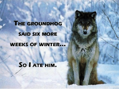 Memes, Winter, and 🤖: THE GROUNDHOG  SAID SIX MORE  WEEKS OF WINTER...  So I ATE HIM.